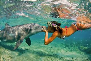 Fille avec des dauphins